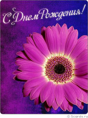 Открытки яркие цветы
