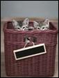 Два маленьких котенка в корзинке стали подарком получателю этой замечательной открытки.