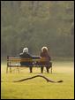 Пожилая пара сидит посреди поля на скамейке: общения дивные мгновенья - вот мой источник вдохновенья!