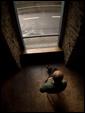 Пожилой человек сидит в одиночестве перед широко расскрытой дверью: одиночество.