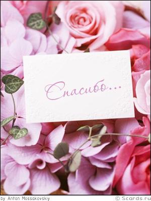 http://scards.ru/cards/thank/roses.jpg